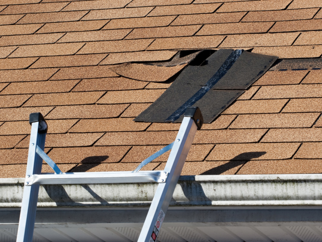 Is Your Roof Missing Shingles?